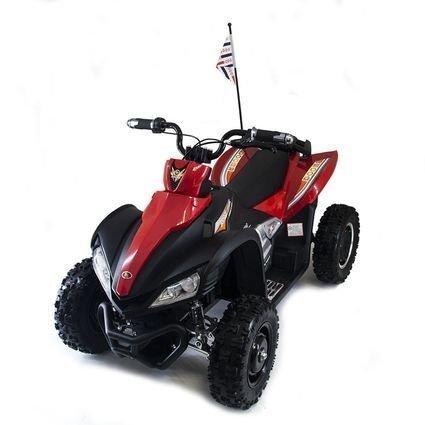 Электроквадроцикл спортивный Dongma ATV Brushless 12V - DMD-278A (колеса резина, подвеска, скорость 15 км\ч)